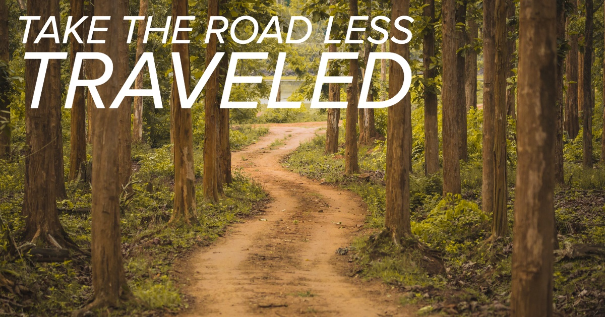 Take the Road Less Traveled: 8 Awesome Reasons to Start Alternative Investing Today